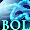 Ebola: Are the Risks Real?