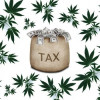 Weed and You: SOU Experts Weigh In