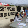 OSPIRG Calls for Action Against LNG Pipeline
