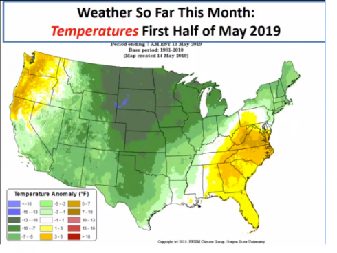 a map of the United states showing the weather temperatures for the first half of may. Temperatures shoe up as green in the middle and yellow near the right and left sides of the map showing an anomaly in the heat as being higher than average.